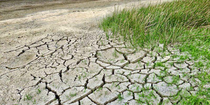 Studi sui cambiamenti climatici, Ecogest