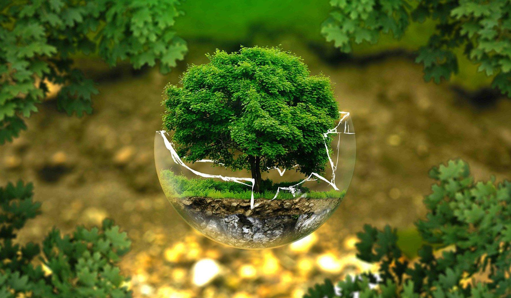 """""""Sconfiggere l'inquinamento atmosferico"""" è il tema scelto per la 47° edizione della Giornata Mondiale dell'Ambiente"""
